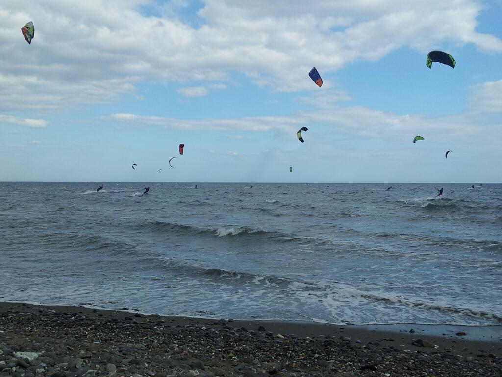 KAY SURF1